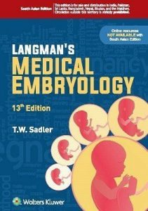 langman embryology pdf